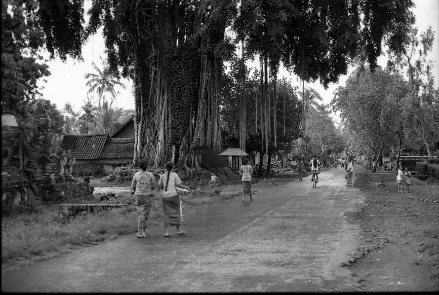 Bali Arts. Peliatan 1973